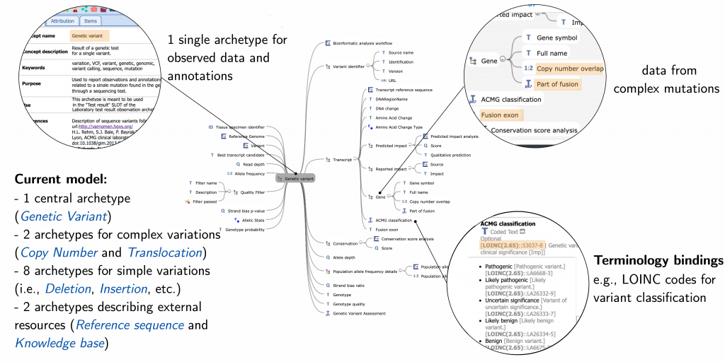 First genomic data models structured according to the openEHR formalism