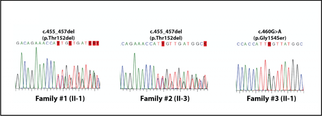Large scale sequencing and analysis of genomic data